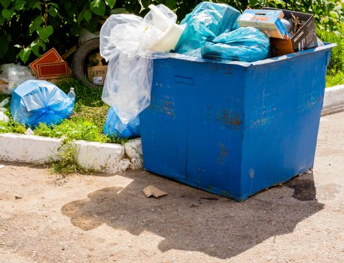 Why we all need to care about how we dispose of our rubbish