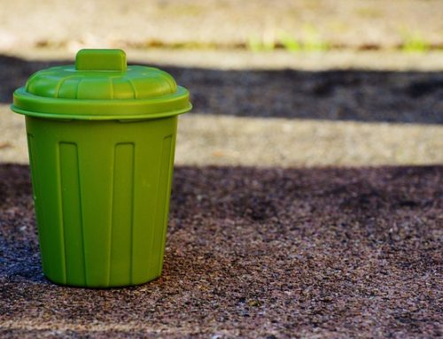 Rubbish Removal in Sydney: Questions You Should Ask